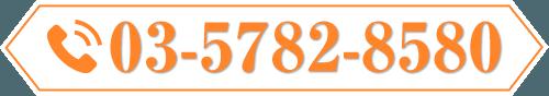 TEL:03-5782-8580